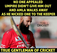 Sportsmanship level : Hashim Amla: NO ONE APPEALED  UMPIRE DIDN'T GIVE HIM OUT  AND AMLA WALKS AWAY  AS HE NICKED ONE TO THE KEEPER  TROLL  CRICKET  Valvoline  TAT  TO  TRUE GENTLEMAN OF CRICKET Sportsmanship level : Hashim Amla