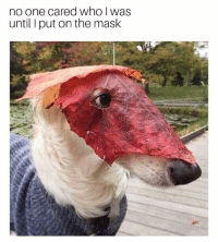 Fresh, Memes, and The Mask: no one cared who I was  until I put on the mask 42 Fresh Animal Memes Dump of the Day