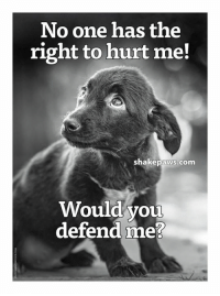Too right, I would!: No one has the  right to hurt me!  shake paws com  Would you  defend meR Too right, I would!