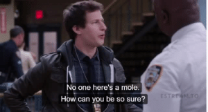 Target, Tumblr, and Brooklyn: No one here's a mole  ESTRE  How can you be so sure? whales-are-gay:  the best moment in brooklyn nine nine