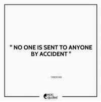 Android, Life, and Http: NO ONE IS SENT TO ANYONE  BY ACCIDENT  UNKNOWN  epIC  quotes #1353  #Life Suggested by Abhishek   Download our Android App : http://bit.ly/1NXVrLL Download our iOS App https://appsto.re/in/luPOcb.i