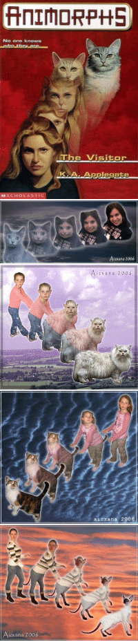 "Animorphs, Books, and Gif: No one knows  e Visitor  KA.Applegate  SCHOLASTIC   Aizxana 2006   i z x an a 2006   aizxana 2006   izxana 2006 <p><a href=""http://theultradork.tumblr.com/post/172923913718/libertarirynn-theultradork"" class=""tumblr_blog"">theultradork</a>:</p>  <blockquote><p><a href=""https://libertarirynn.tumblr.com/post/172923874219/theultradork-screechingchaosbear"" class=""tumblr_blog"">libertarirynn</a>:</p><blockquote> <p><a href=""http://theultradork.tumblr.com/post/172923844978/screechingchaosbear-parks-and-rex-we-need"" class=""tumblr_blog"">theultradork</a>:</p>  <blockquote> <p><a href=""http://screechingchaosbear.tumblr.com/post/166140279209/parks-and-rex-we-need-to-discuss-your-recent"" class=""tumblr_blog"">screechingchaosbear</a>:</p> <blockquote> <p><a href=""http://parksandrex.com/post/166128235700"" class=""tumblr_blog"">parks-and-rex</a>:</p> <blockquote><figure data-orig-height=""160"" data-orig-width=""245""><img src=""https://78.media.tumblr.com/0d774fafe645b92e4abc1fcfeaddb0f8/tumblr_inline_oxfkbssugd1ty99rh_540.gif"" data-orig-height=""160"" data-orig-width=""245""/></figure></blockquote>  <p>We need to discuss your recent obsession with this gif </p> </blockquote> <p>OH MY GOD I LOVED ANIMORPHS THO</p> </blockquote>  <p>Holy shit you guys I just realized that the generation who grew up reading Animorphs grew up into the generation that gave us Furries. Coincidence?</p> </blockquote> <p>Given the subject of the books? Yes.<br/><br/>I'd blame Lola Bunny and Krystal of Star Fox fame. Same gen, and introduced right around the time they were hitting puberty. </p></blockquote>  <p>But you're making the mistake of assuming everybody *read* those books to understand their subject matter, when I feel a lot of people were like me and just stared at the covers in confusion and intrigue 😂</p><p><br/></p><p>I think we can all agree that Lola Bunny had something to do with it though.</p>"