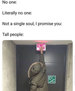 Irl, Me IRL, and Single: No one:  Literally no one:  Not a single soul, I promise you:  Tall people:  C2  EXIT Me irl