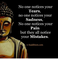 Memes, Sad, and Buddhism: No one notices your  Tears  no one notices your  Sadness,  No one notices your  Pain  but they all notice  your Mistakes  e-buddhism com