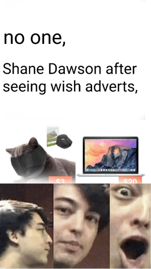 WE WILL NEVER FORGET!!!!!: no one,  Shane Dawson after  seeing wish adverts,  $20 WE WILL NEVER FORGET!!!!!