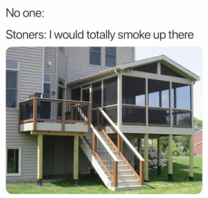 Memes, 🤖, and One: No one:  Stoners: I would totally smoke up there