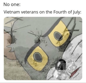 Vietnam, Dank Memes, and Never: No one:  Vietnam veterans on the Fourth of July: War, war never changes...