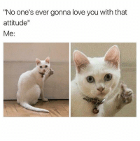 """Memes, 🤖, and Love You: """"No one's ever gonna love you with that  attitude""""  Me Someone will love me, attitude and all, you just wait and see. Maybe not today, or tomorrow, or in this lifetime 😹😹 @1foxybitch"""