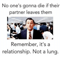 Memes, 🤖, and Lung: No one's gonna die if their  partner leaves them  Remember, it's a  relationship. Not a lung 💯