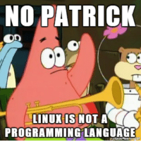 no this is patrick: NO PATRICK  OR  LINUX IS NOT A  PROGRAMMING LANGUAGE