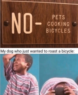 My disappointment is immeasurable,my day is ruined.: NO-  PETS  COOKING  BICYCLES  My dog who just wanted to roast a bicycle: My disappointment is immeasurable,my day is ruined.