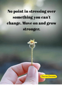 Memes, Change, and 🤖: No point in stressing over  something you can't  change. Move on and grow  stronger.