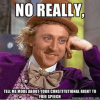 Credit: Elle Wren: NO REALLY  TELL ME MORE ABOUT YOUR CONSTITUTIONAL RIGHT TO  FREE SPEECH  meme generator ne Credit: Elle Wren