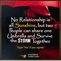 Memes, 🤖, and Genie: No Relationship is  all Sunshine  but two  People can share one  umbrella and Survive  the STORM Together  Type 'Yes' if you agree!  A Inspirational  Quotes Genie <3