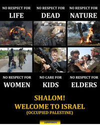 Life, Memes, and Respect: NO RESPECT FOR  NO RESPECT FOR  NO RESPECT FOR  LIFE  DEAD  NATURE  NO RESPECT FOR  NO CARE FOR  NO RESPECT FOR  WOMEN  KIDS  ELDERS  SHALOM!  WELCOME TO ISRAEL  COCCUPIED PALESTINE)  fbMsraelWC Today #Israel (Antique Authority aka Squatter Org) bulldozed #Palestinian graves at the Cemetery next to #Al_Aqsa Mosque under #IOF protection.