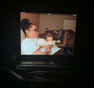 My girlfriend and I have been long distance for 6 years. We are closing the gap this summer. Every night we FaceTime before bed. I'm excited to get to be with my girlfriend every day. But I will miss getting to see her family dog Frank every night.: No Service  9:51 PM  100%O My girlfriend and I have been long distance for 6 years. We are closing the gap this summer. Every night we FaceTime before bed. I'm excited to get to be with my girlfriend every day. But I will miss getting to see her family dog Frank every night.