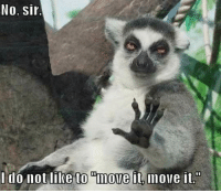 xP -Smokey: No, Sir  do not like to move  it move it. xP -Smokey