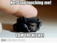 9gag, Dank, and Http: No! Stop touching me!  I AM THE NIGHT!  9GAG  COM/GAG  5803460 I AM THE NIGHT!!!