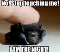 No! Stop  touching me!  I AM THE NIGHT! When you're cute af so no one takes you seriously