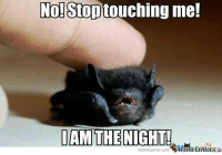 No! Stop  touching me!  IAM THE NIGHT!  memecenter.com I am darkness! Fear me!