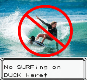 No SURFing on DUCK here! https://t.co/ngkCP3DxdB: No SURFing  On  DUCK Here! No SURFing on DUCK here! https://t.co/ngkCP3DxdB