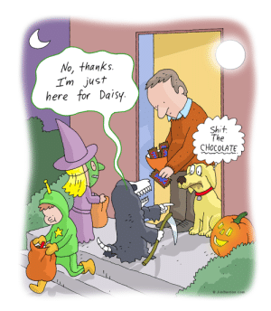 more Halloween fun: No, thanks.  Im just  here for Daisy  Shit  The  CHOCOLATE  O JimBenton.com more Halloween fun
