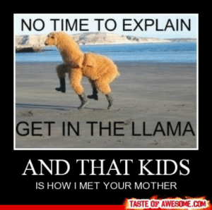 And That Kidshttp://omg-humor.tumblr.com: NO TIME TO EXPLAIN  GET IN THE LLAMA  AND THAT KIDS  IS HOW I MET YOUR MOTHER  TASTE OF AWESOME.COM And That Kidshttp://omg-humor.tumblr.com