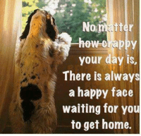 happy faces: No  tter  how crappy  your day is,  There is always  a happy face  waiting for you  to get home.