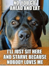 nobody love: NO,YOU GO  AHEAD AND EAT  ILL JUST SIT HERE  AND STARVE BECAUSE  NOBODY LOVES ME