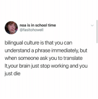 zz: noa is in school time  @fasitohowell  bilingual culture is that you can  understand a phrase immediately, but  when someone ask you to translate  It your brain just stop working and you  just die zz