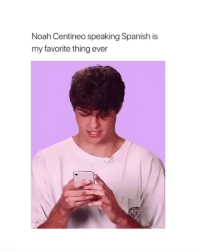 Spanish, Noah, and Girl Memes: Noah Centineo speaking Spanish is  my favorite thing ever te amo