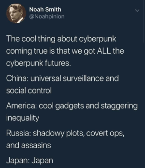 Cyberpunk: Noah Smith  @Noahpinion  The cool thing about cyberpunk  coming true is that we got ALL the  cyberpunk futures.  China: universal surveillance and  social control  America: cool gadgets and staggering  inequality  Russia: shadowy plots, covert ops,  and assasins  Japan: Japan Cyberpunk