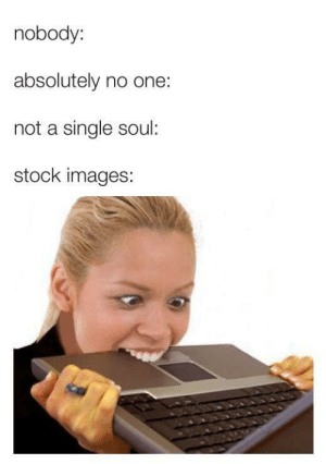 stock images: nobody:  absolutely no one:  not a single soul:  stock images: