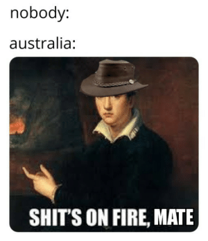 One must become the barbe': nobody:  australia:  SHIT'S ON FIRE, MATE One must become the barbe'