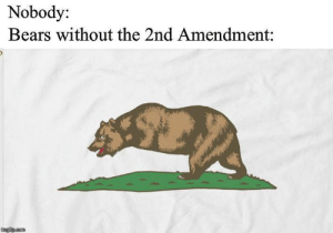 Meirl: Nobody:  Bears without the 2nd Amendment:  imgflip.com Meirl