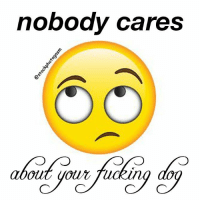go bork yourself: nobody cares  aboutyotm fucking dog  out,yotc/ucking dog  out UOurTu go bork yourself