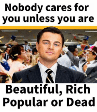 Popular Memes: Nobody cares for  you unless you are  Beautiful, Rich  Popular or Dead
