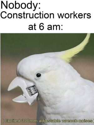 But why via /r/memes https://ift.tt/2YAM6YE: Nobody:  Construction workers  at 6 am:  [Excited 300mm adjustable wrench noises But why via /r/memes https://ift.tt/2YAM6YE
