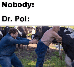 Nobody Dr Pol Pull Da Cow Out! | Dr Pol Meme on ME ME
