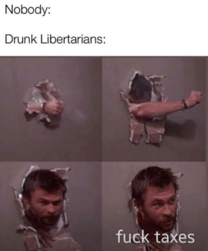 meirl by LeaveEveryoneAlone MORE MEMES: Nobody:  Drunk Libertarians:  fuck taxes meirl by LeaveEveryoneAlone MORE MEMES