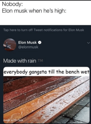 meme: Nobody:  Elon musk when he's high:  Tap here to turn off Tweet notifications for Elon Musk  Elon Musk  @elonmusk  Made with rain TM  everybody gangsta till the bench wet  made with rain meme