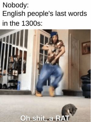 Oh nooooooo! by uhavedonethaturself MORE MEMES: Nobody:  English people's last words  in the 1300s:  Oh shit, a RAT Oh nooooooo! by uhavedonethaturself MORE MEMES