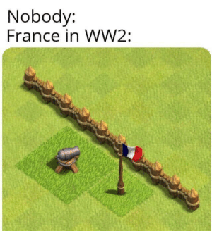 France bad at war laugh: Nobody:  France in WW2: France bad at war laugh
