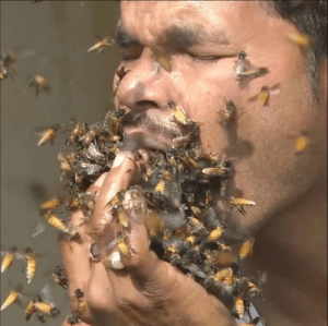 NOBODY: Hey can anyone here shove a handful of bees in their mouth?  THIS GUY: Hold my beer...: NOBODY: Hey can anyone here shove a handful of bees in their mouth?  THIS GUY: Hold my beer...