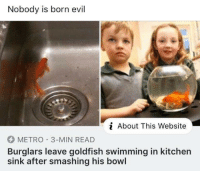 Goldfish, Metro, and Evil: Nobody is born evil  About This Website  METRO 3-MIN READ  Burglars leave goldfish swimming in kitchen  sink after smashing his bowl mixed feelings about this one 😌