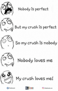 perfect: Nobody is perfect  But my crush is perfect  So my crush is nobody  Nobody loves me  My crush loves me!  f/Sadcasm  SADGASM  /Sadcasm.co