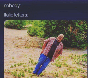 Letters, Nobody, and Italic: nobody:  Italic letters: