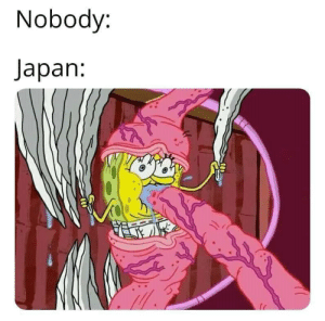 Why Japan just why: Nobody:  Japan: Why Japan just why