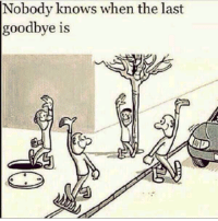 Nobody Know: Nobody knows when the last  goodbye is