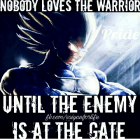 So i think Vegeta should get a new form... Stay tuned im going to try and have the episode... Hit like and share.... Thanks for the support!: NOBODY LOVES THE WARRIOR  UNTIL THE ENEMY  IS AT THE GATE So i think Vegeta should get a new form... Stay tuned im going to try and have the episode... Hit like and share.... Thanks for the support!